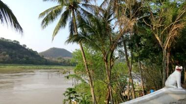 Rio Mekong, muitas opções de passeios de barco