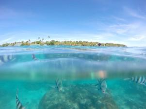 Bounty Island Resort