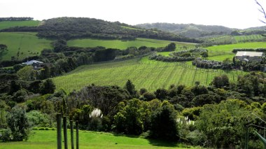 Uma das muitas vinícolas