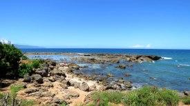 Sharks Cove, ponto para mergulho