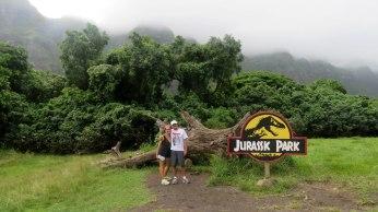 O tronco que serviu de abrigo contra a corrida dos dinossauros